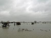 Maas Hoog water