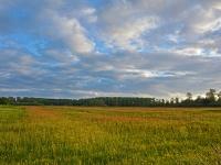 Natuurterrein Regulieren