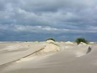 Ameland duinvorming