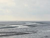 Ameland Waddenzee 1000 x 665