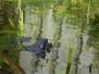 Jac Hendriks natuur